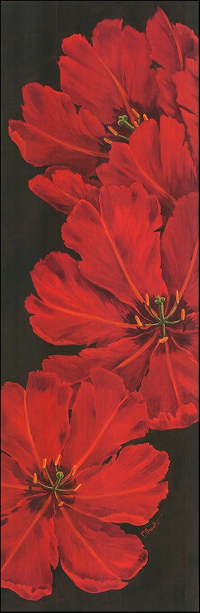 G BNT98 Bellla Grande Tulips by Paul Brent 30x91cm on paper