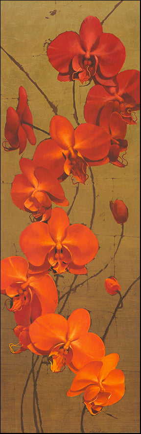 G JCCTL100 Golden Orchids 1 by Kenneth Catlett 33x99cm on paper