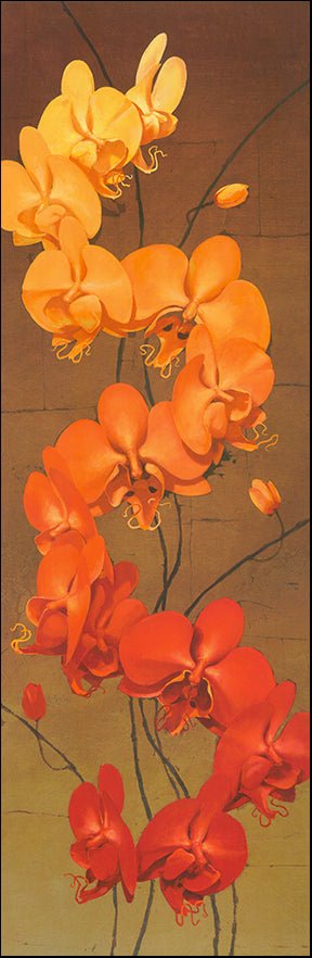 G JCCTL101 Golden Orchids 2 by Kenneth Catlett 33x99cm on paper