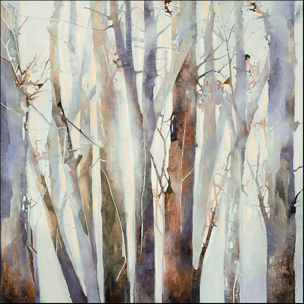 98689 Misty Trees, by Harvey, available in multiple sizes