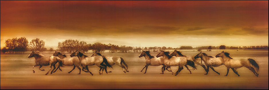 R Horses Running by Unknown 91x30cm on paper