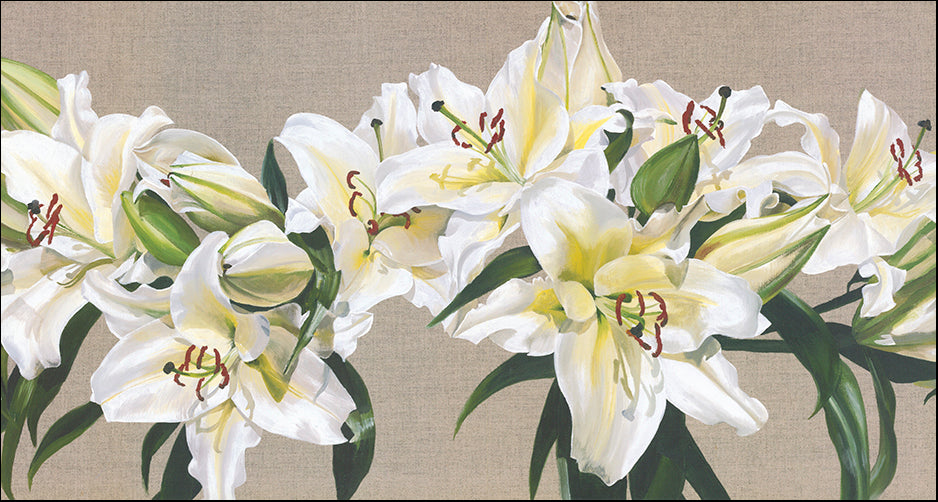 R SPV9245 Lily Garland by Sarah Caswell 93x50cm on paper