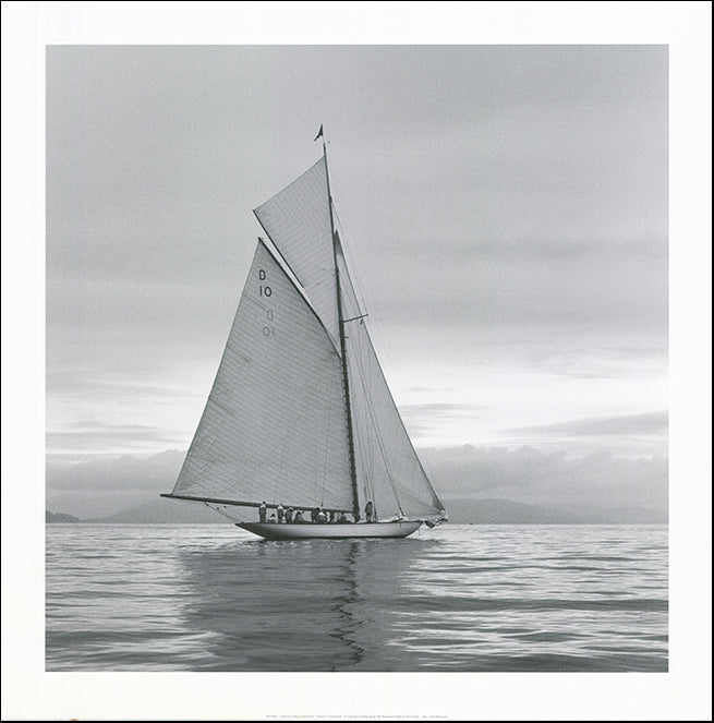 R SPV9283 lady Anne Sailing by Ben Wood 70x70cm on paper