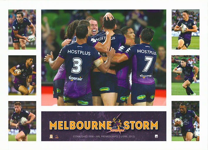 Rugby Melbourne Storm 50x70cm paper - Chamton