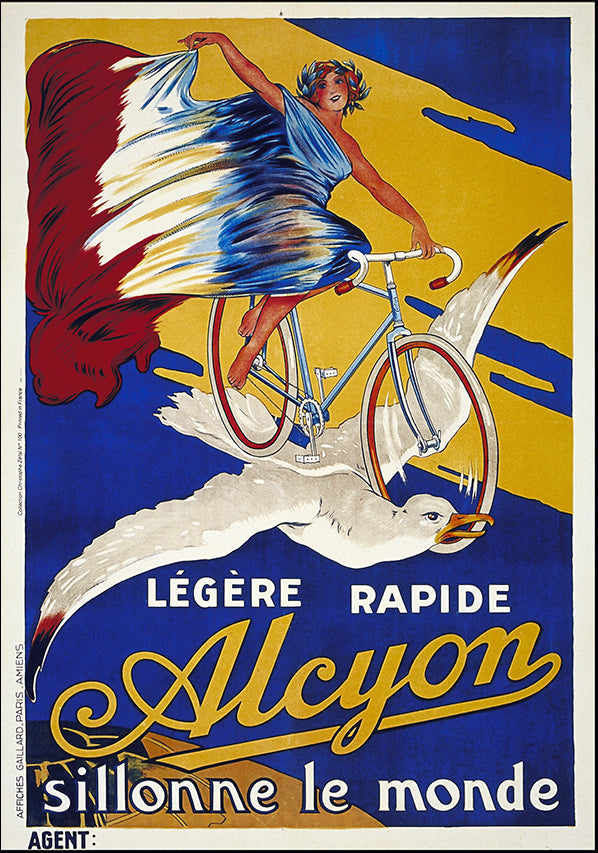 VINAPP116628 Legere Rapide Alycon, available in multiple sizes