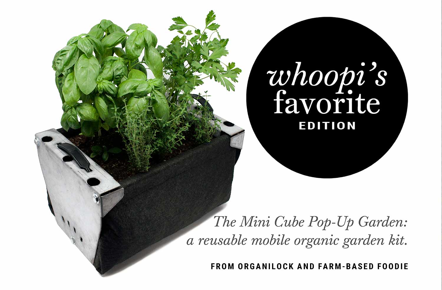 Mini Cube Pop-Up Garden  |  Whoopi's Favorite Edition