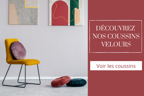 collection de coussin velours