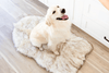 The Faux Fur Memory Foam Orthopedic Dog Bed Pet Cushion Dog Joint Pain Relief PupRug