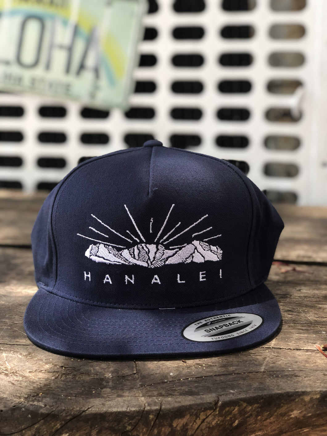 EMBROIDERED MOUNTAIN SNAPBACK