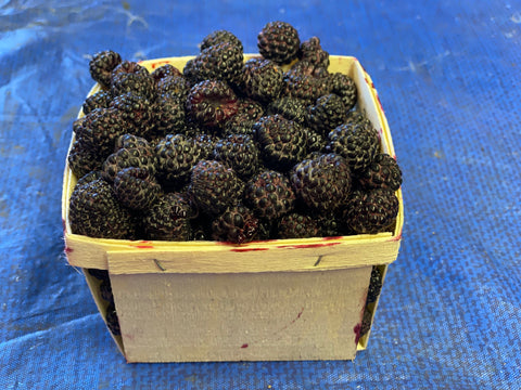 Black Raspberries 1 pint