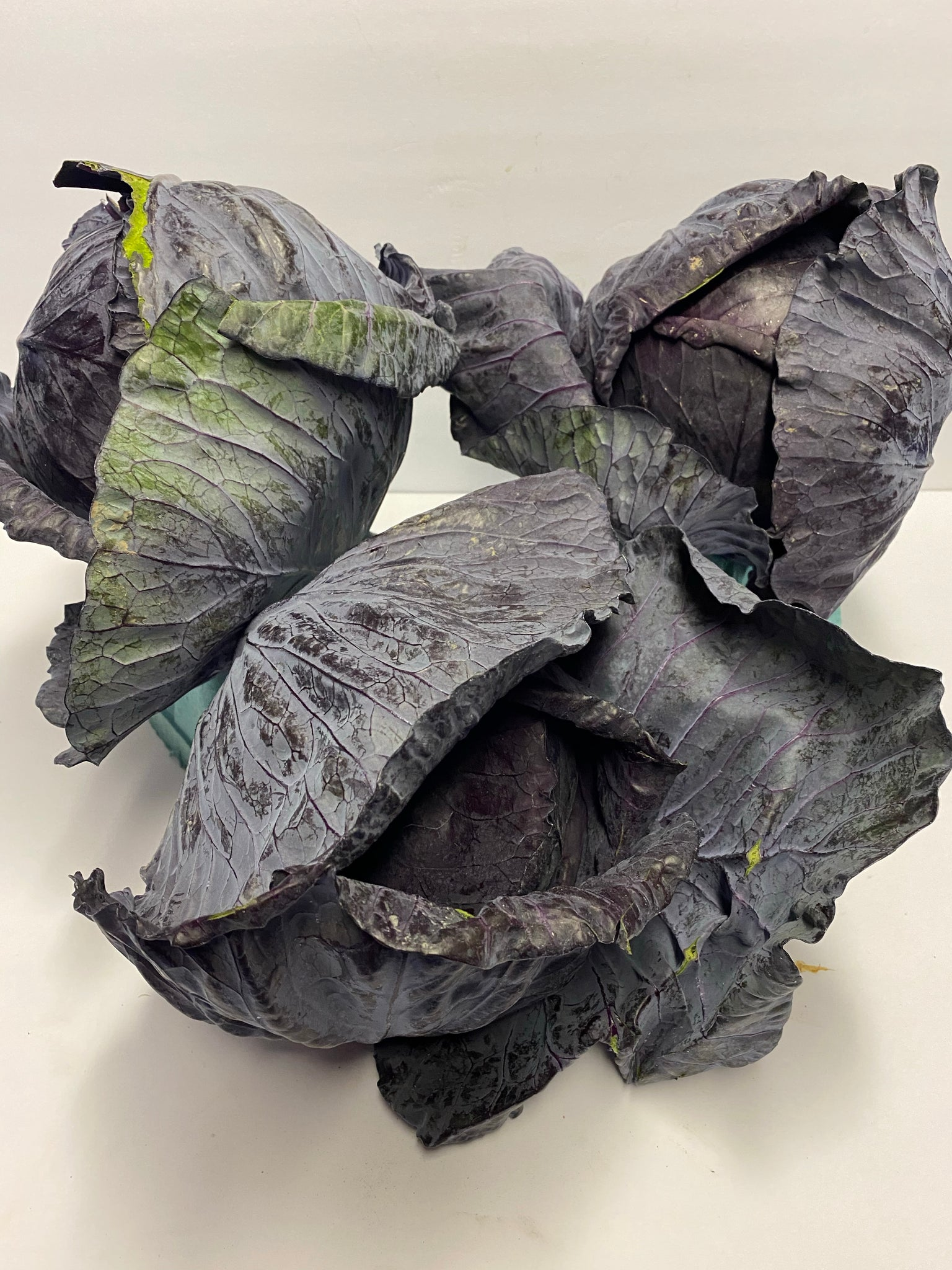 Red Cabbage 1 ea