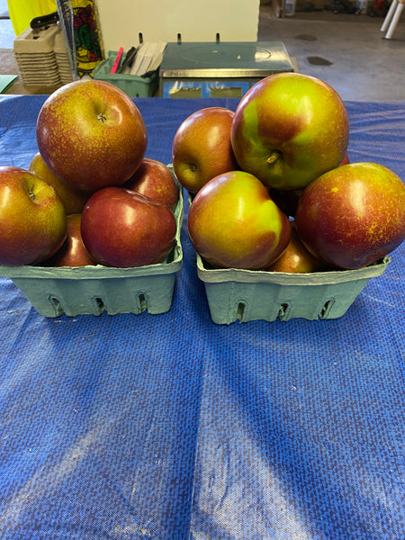 MacIntosh Apples 1 quart