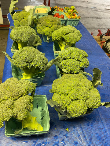 Broccoli. 1 bunch