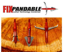 Load image into Gallery viewer, 30+ piece VALUE PACK 100 grain FIXpandable Broadheads + FREE SHIPPING!