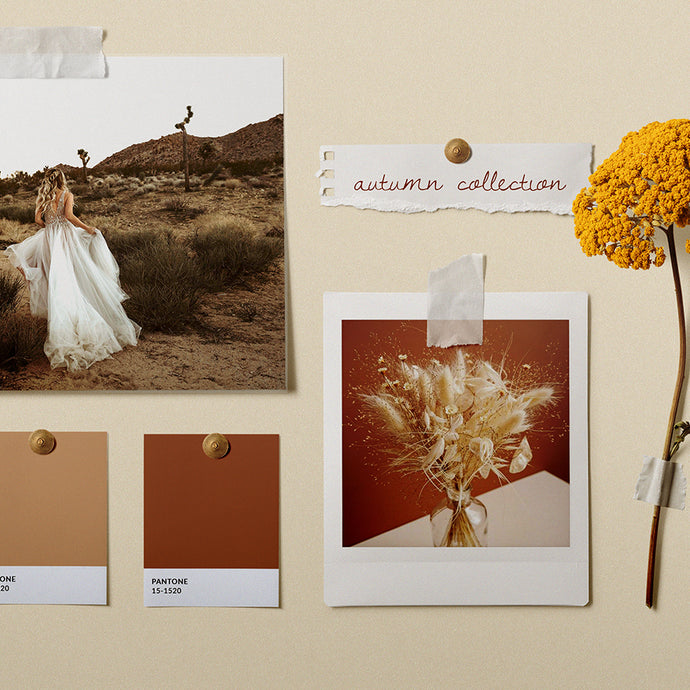The Autumn Collection: Inspiration
