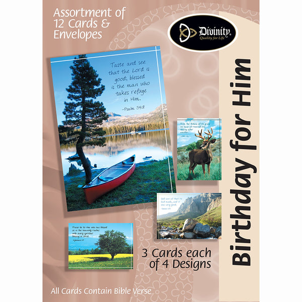 Divinity Boutique Boxed Cards: Birthday For Him