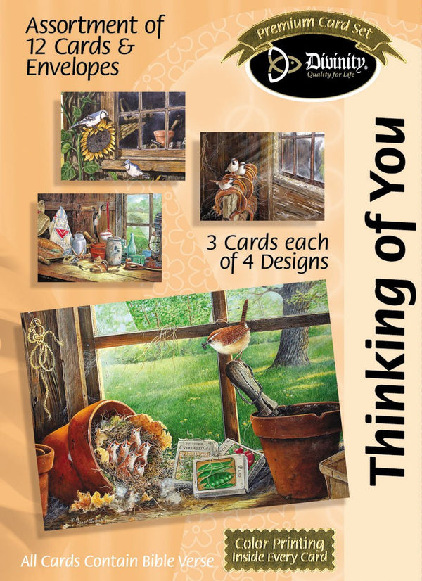 Divinity Boutique Boxed Cards: Thinking Of You, Barn Windows