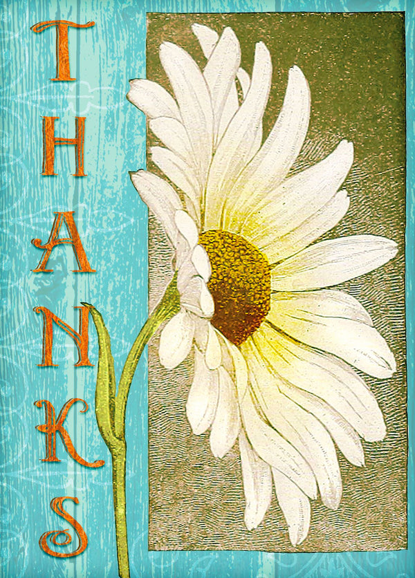 Divinity Boutique Single Cards: Thank You Daisy (6 Pack)
