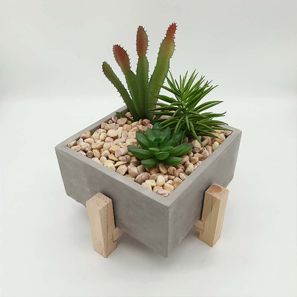 Men's Concrete Desk Planter Mad Man by Mad Style Wholesale