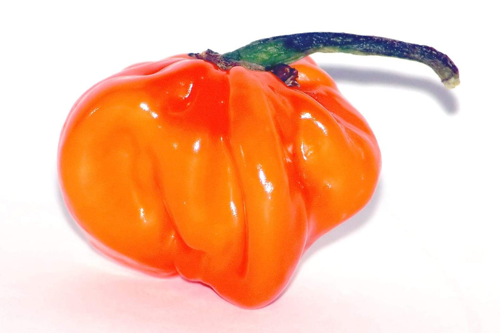 How hot? The Scoville Scale explained
