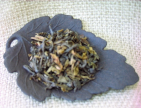 Sea Turtle Green Tea