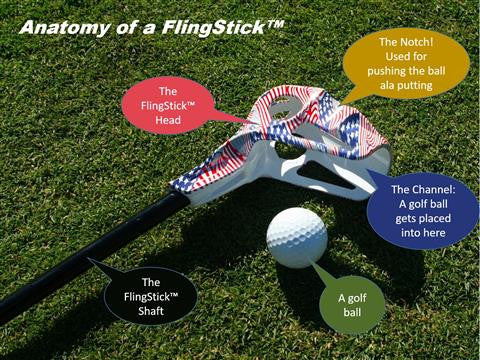 Anatomy of a FlingStick