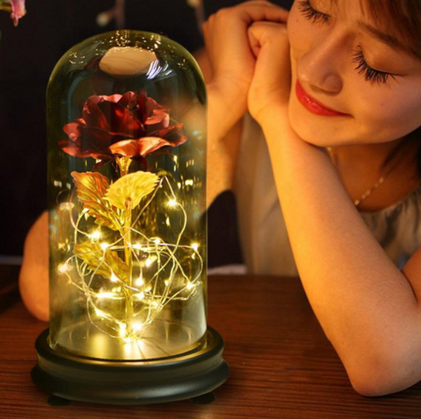 Enchanting Rose with Glass Case