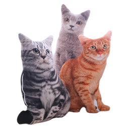 1PCS 50CM 3D Simulation Cats Pillow, Cute Cat Washable Plush Stuffed Pillow, Kids Toy, Sofa Pillow, Home Decoration