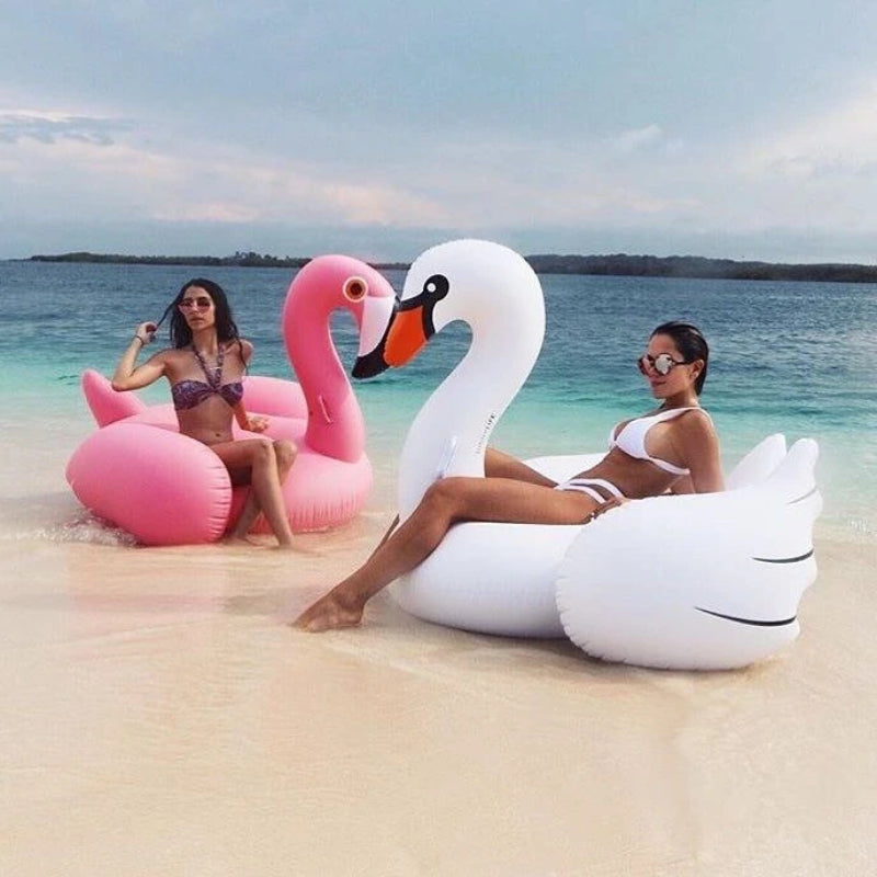 Summer Swan Inflatable Beach Float
