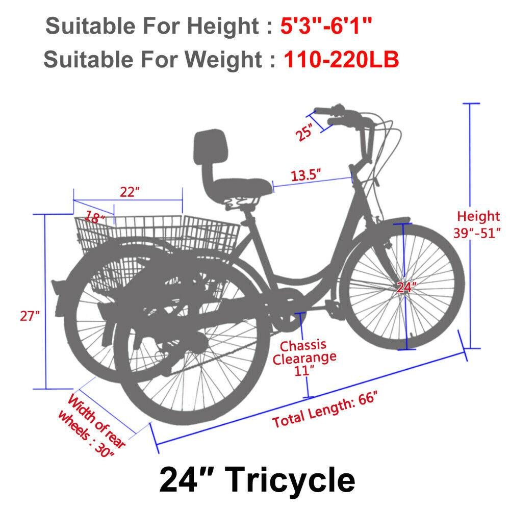 24 Inch Adult Tricycle Trike 3 Wheel Bike 6 Speed Shift + Shopping Basket