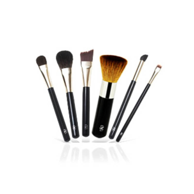 MAKEUP BRUSH SET | 6 PROFESSIONAL BRUSHES