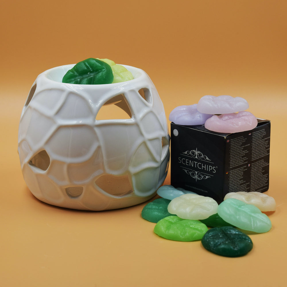Diffusore ScentBurners Limited Edition + ScentBox Small 8 cere
