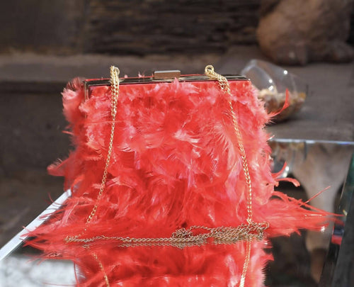 Red bag with feathers
