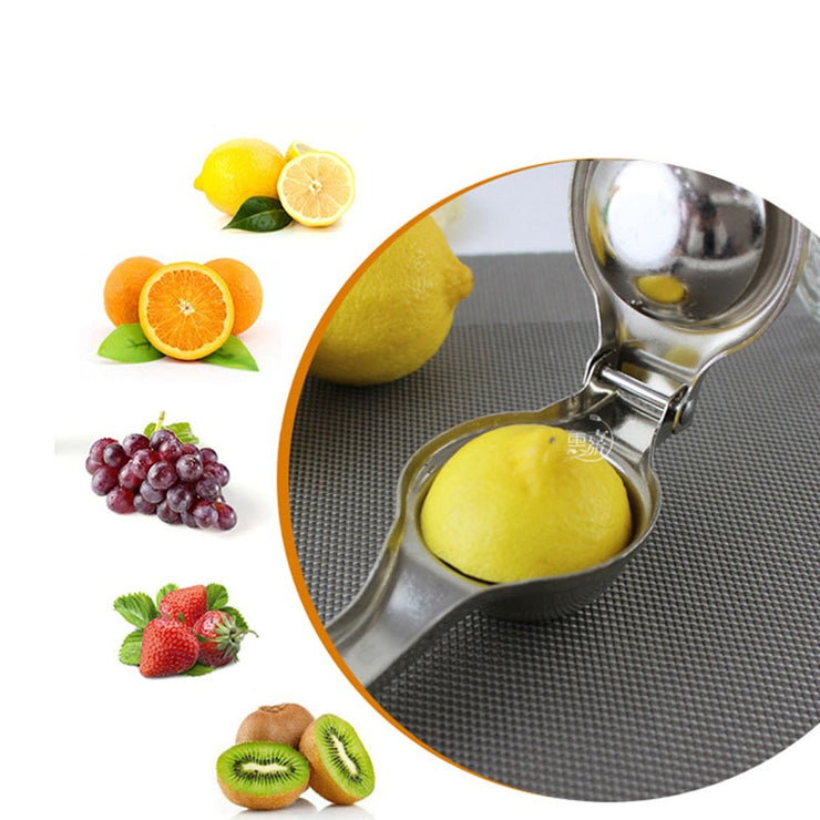 Stainless Steel Citrus Juicer - Luxelabeled
