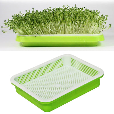 Plastic Nursery Seed Sprouter - Luxelabeled
