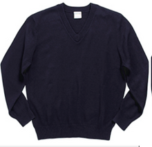 Load image into Gallery viewer, STL Unisex V-Neck Sweater