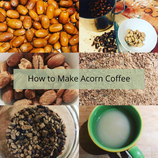How to make Acorn Coffee