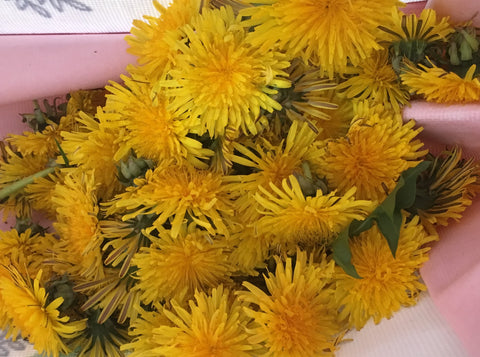 Dandelions for Mead