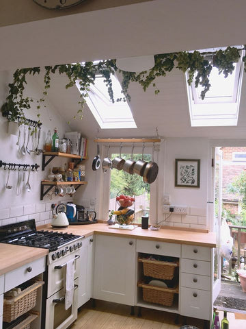 Hanging Hops in the Kitchen