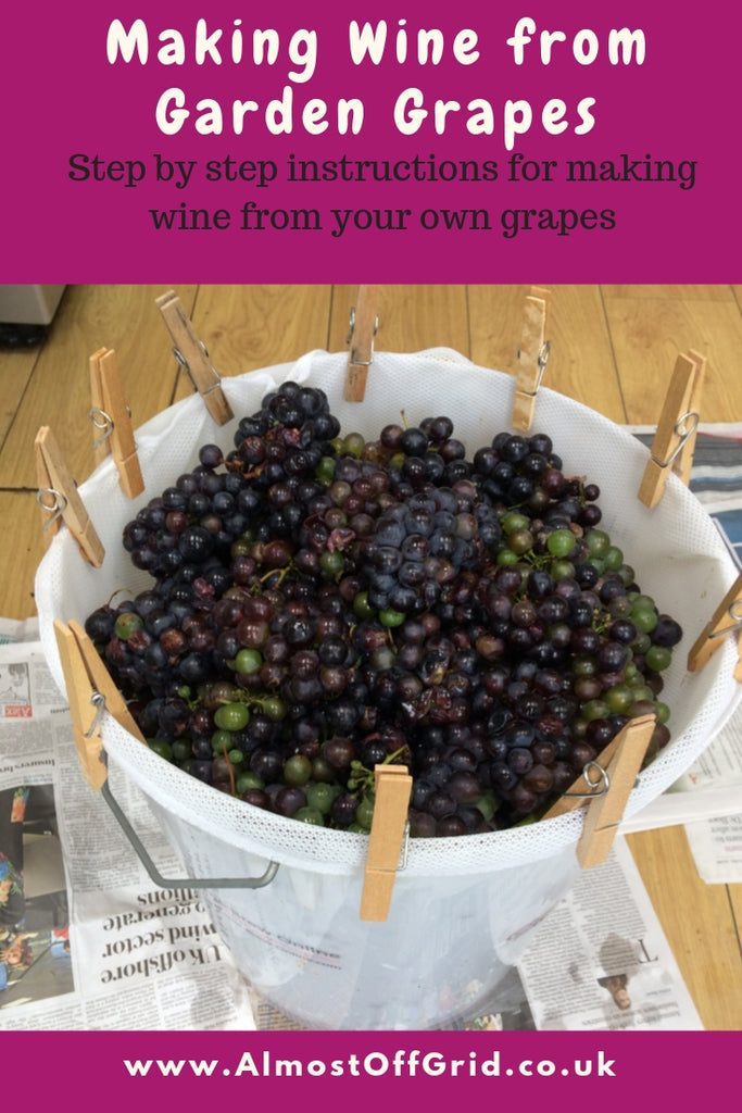 Making Wine from Garden Grapes