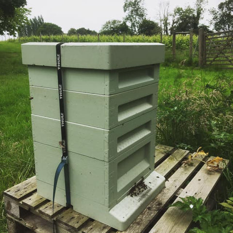 Poly Bee Hive in Summer