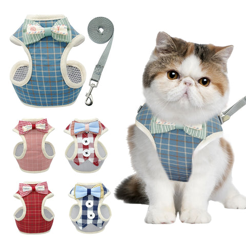 Cute Cat Nylon Harness and Leash Set
