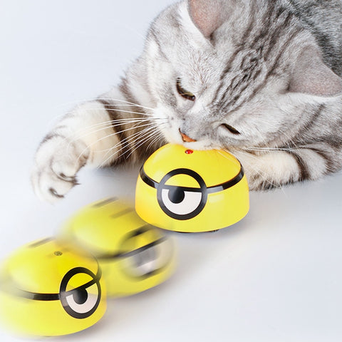 'Catch Me If You Can' Super Fun Cat Toy