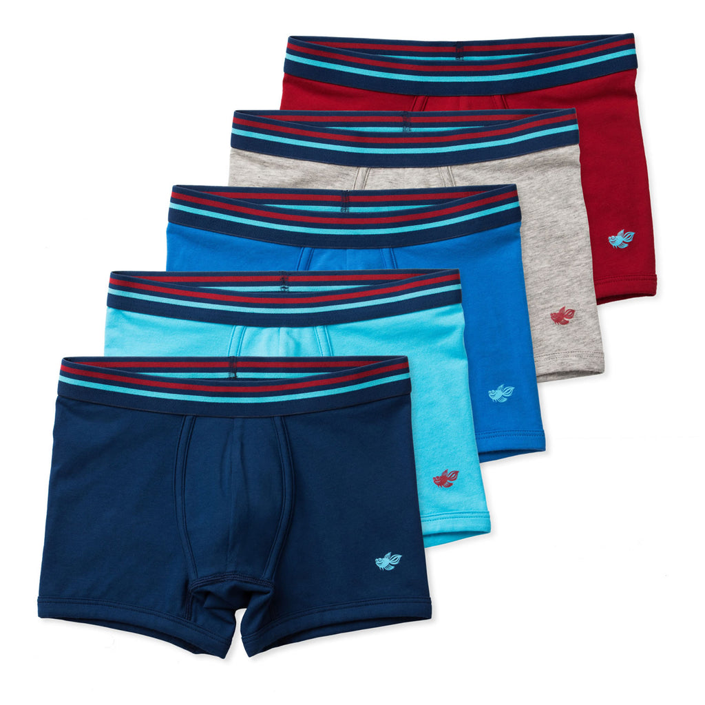 Jameson Performance Boys Boxer Briefs (5-Pack)