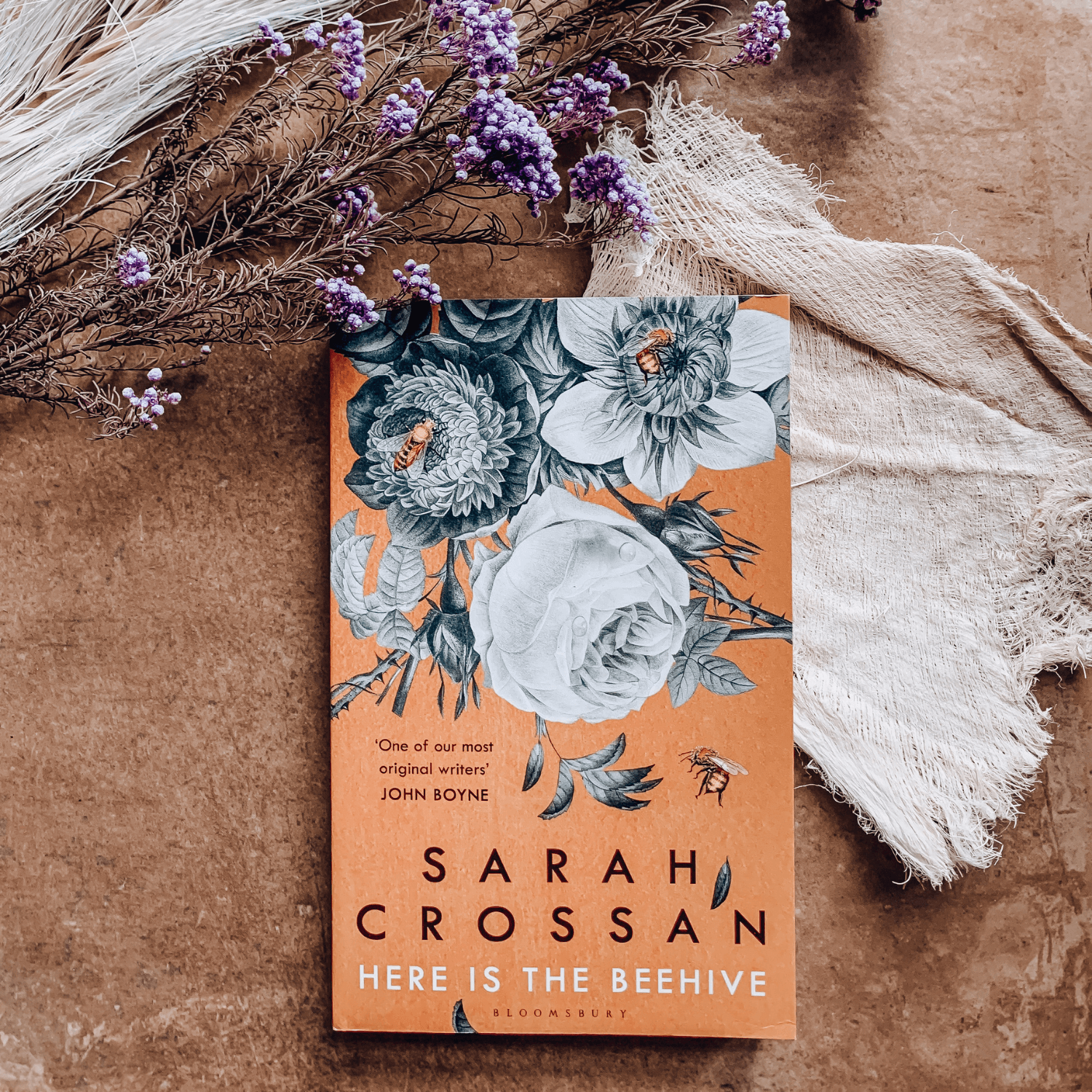 Here Is The Beehive ~ Sarah Crossan
