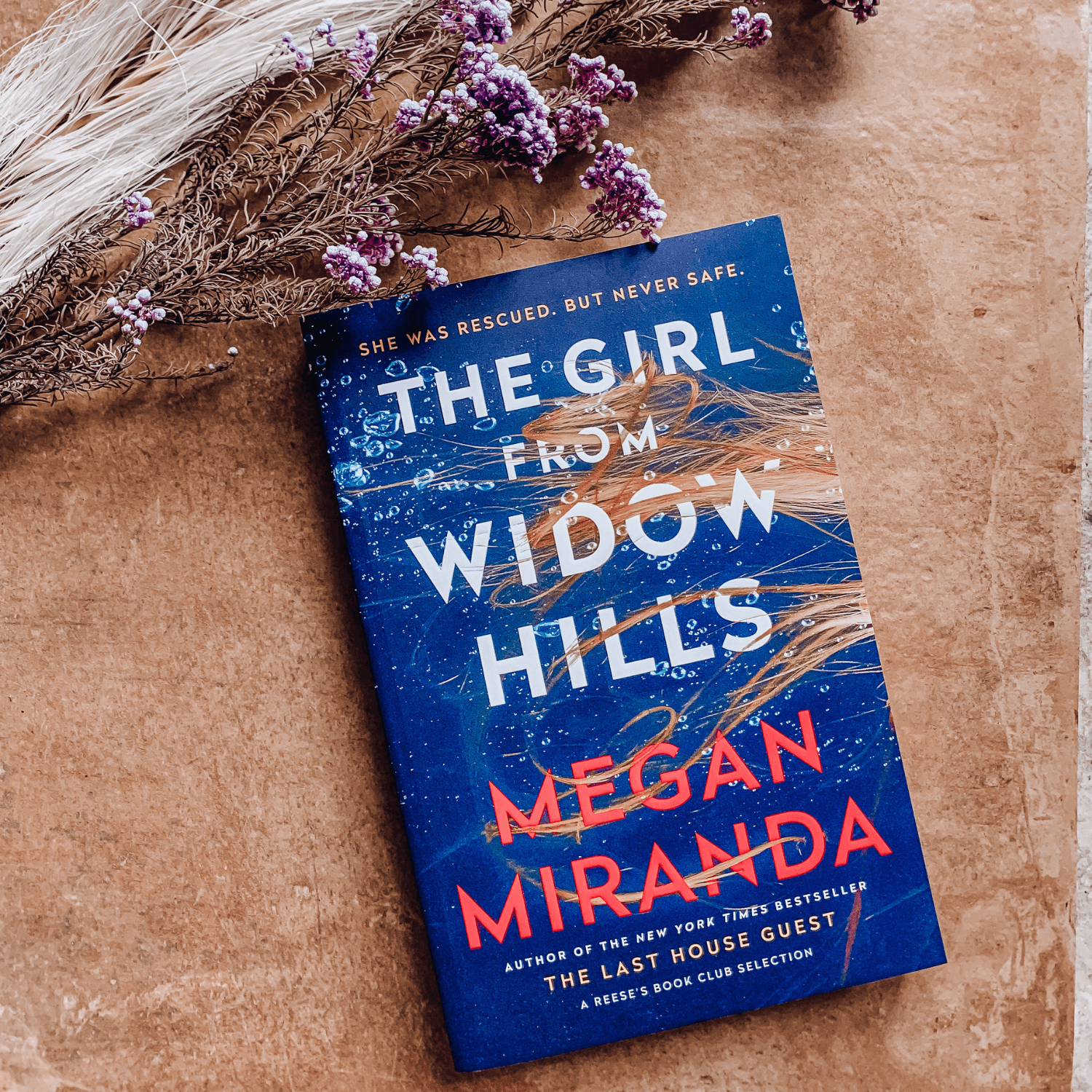 The Girl From Widow Hills ~ Megan Miranda