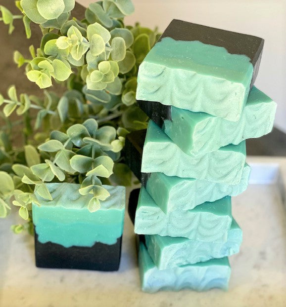 Activated Charcoal + Tea Tree & Eucalyptus Soap
