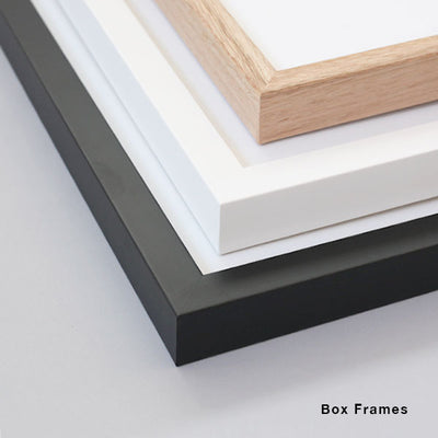 Box Frame - Black / Artist Services