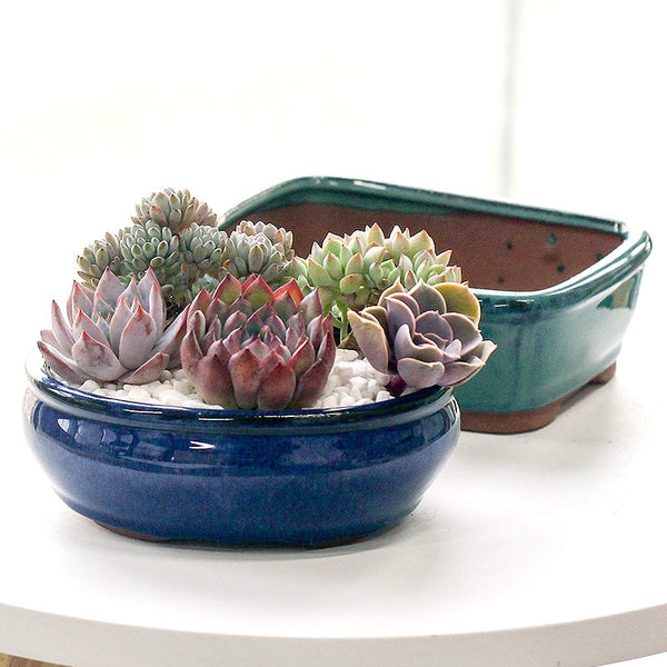 Purple Clay Pots