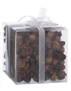 Box of Pine Cones